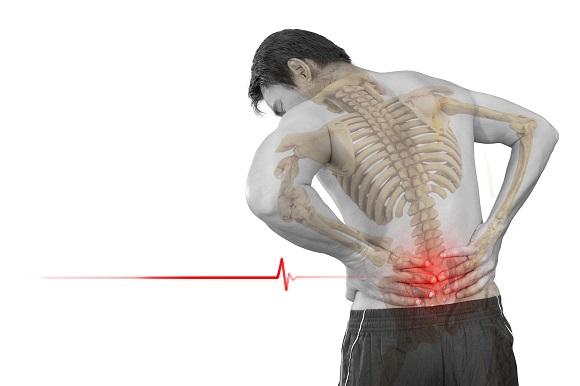 nguyên nhân đau lưng dưới maple healthcare